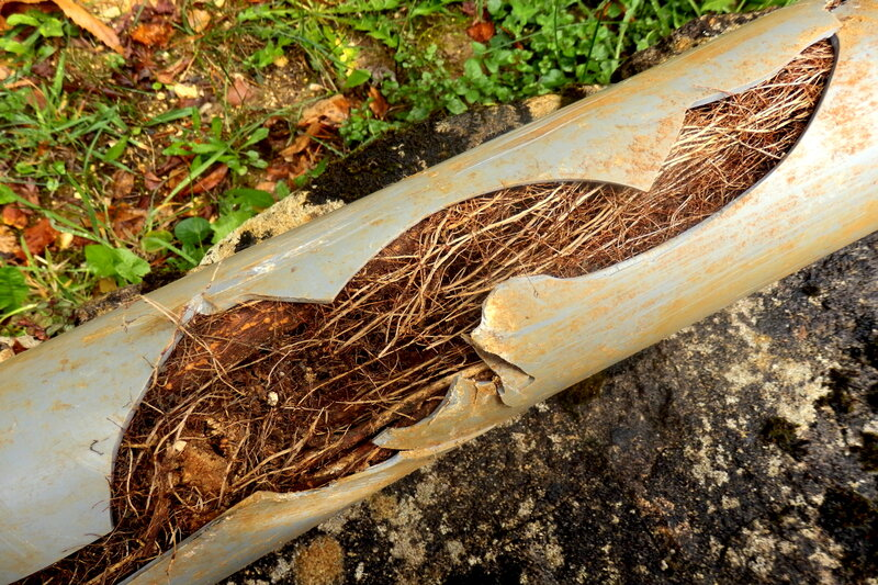 Blocked Drain Pipe in Swindon Wiltshire